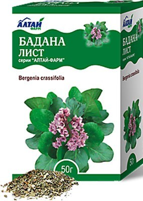 Badan Leaves/Bergenia crassifolia  50g